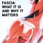 Fascia: What it is and Why it Matters [Article]
