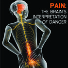 Pain: The Brain's Interpretation of Danger [Article]