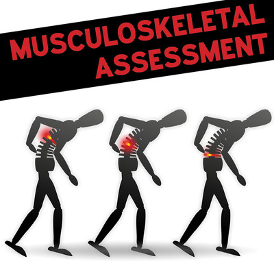 Manual Therapy Student Handbook: Musculoskeletal assessment - Part 3 [Article]