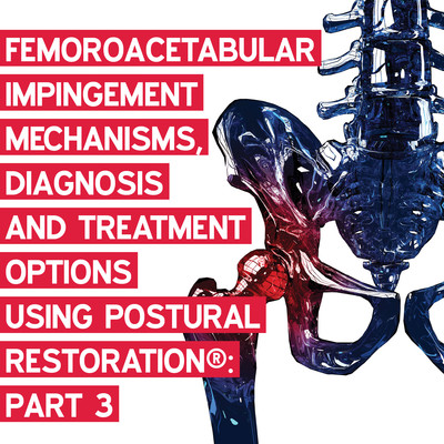 Femoroacetabular Impingement: Mechanisms, Diagnosis and Treatment Options using Postural Restoration®: Part 3 [Article]
