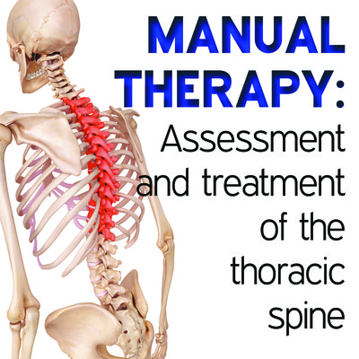 Manual Therapy Student Handbook: Assessment and Treatment of the Thoracic Spine - Part 13 [Article]