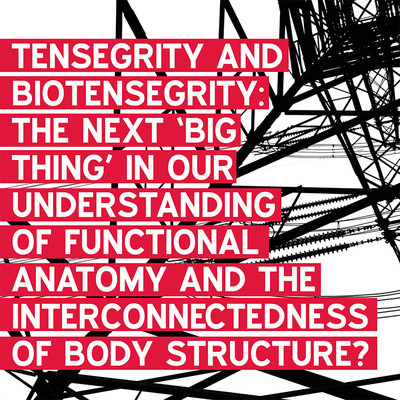 Tensegrity and biotensegrity - is this  the next big thing in understanding body structure?