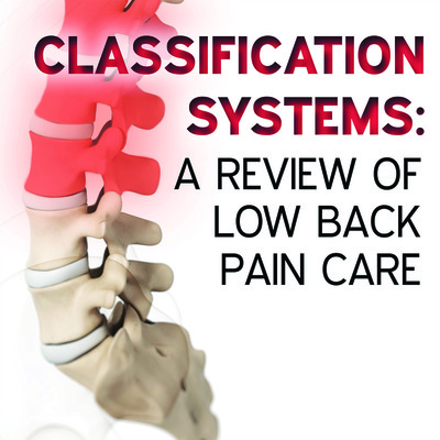 Classification Systems: A Review of Low Back Pain Care [Article]