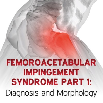 Femoroacetabular Impingement Syndrome Part 1: Diagnosis and Morphology [Article]